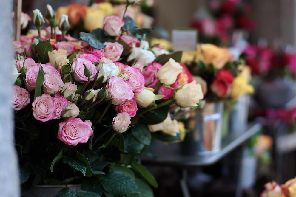 au nom de la rose milano